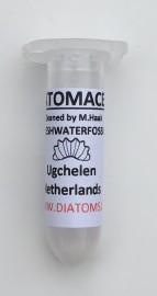 2ml diatom sample Ugchelen